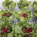 Freshly Made Salads